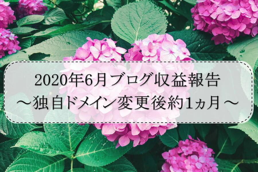 2020年6月ブログ収益報告~独自ドメイン変更後約1ヵ月~